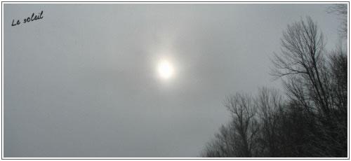 25janvier20094