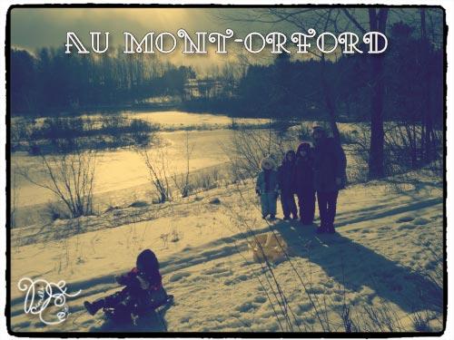 montorford201113