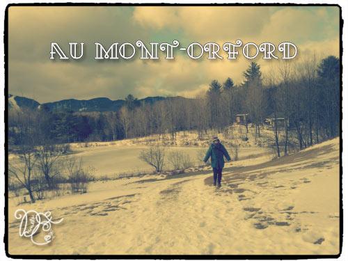 montorford20113