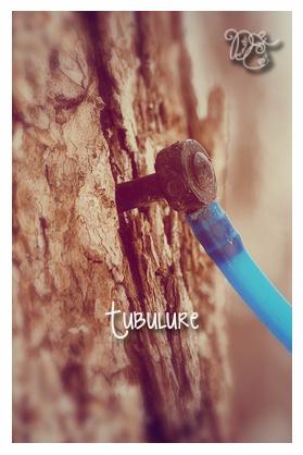 Tubulure