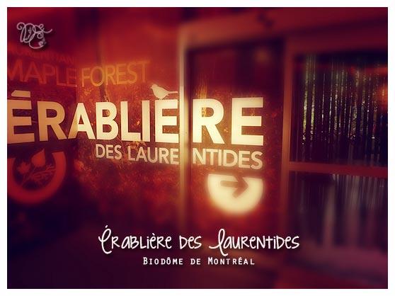 Érablière des Laurentides, Biodôme de Montréal