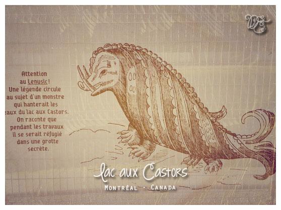 Monstre du lac aux Castors, Montréal