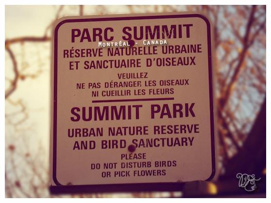 Parc summit, Montréal