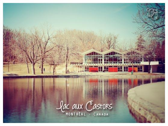 Lac aux Castors, Montréal