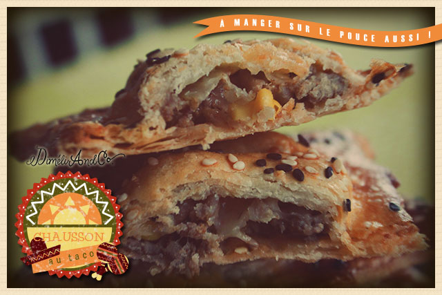 Chausson au taco de4c for Assaisonnement tacos maison